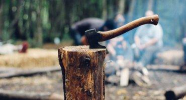 Tannenbaumschlagen im Alten Land